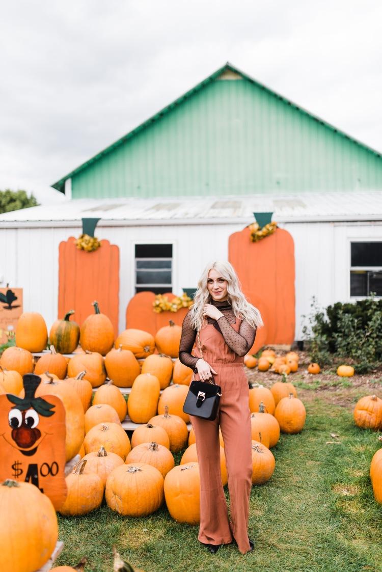 pumpkins-1