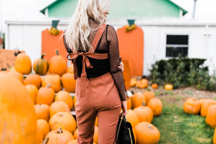 pumpkins-7